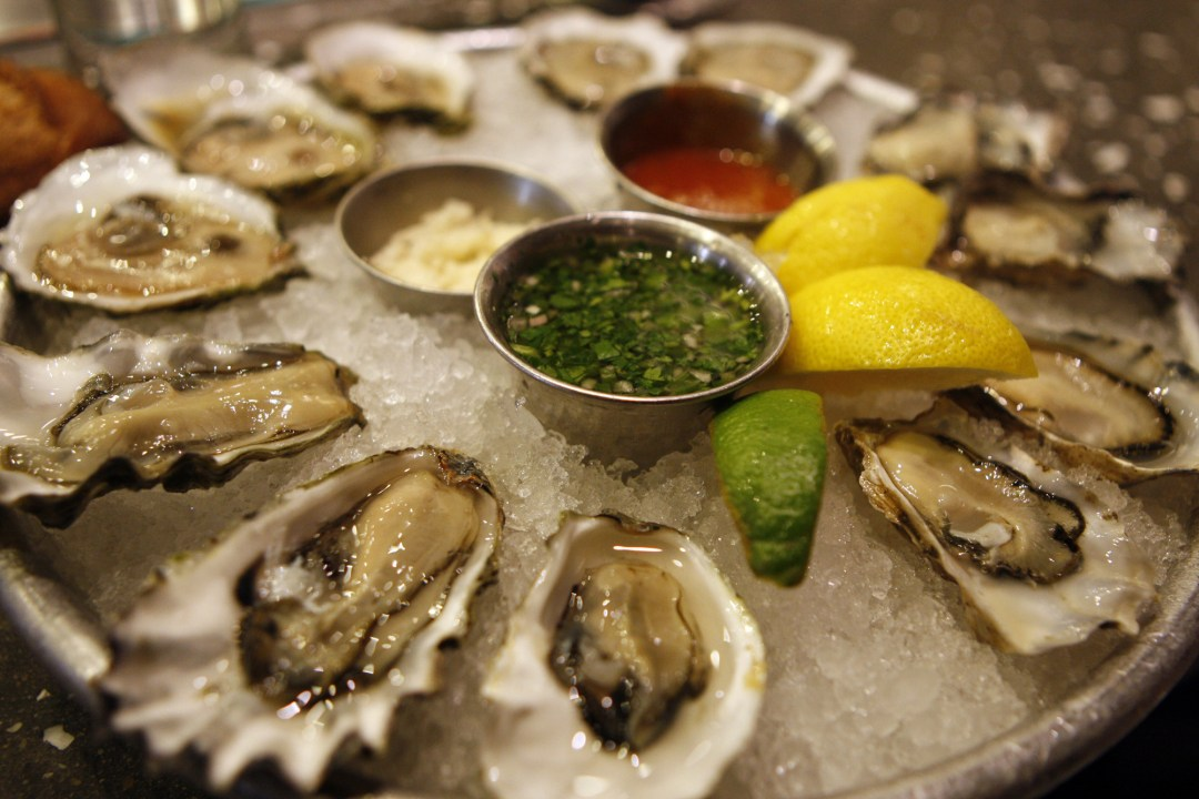 National Oyster Day - August 5, 2017