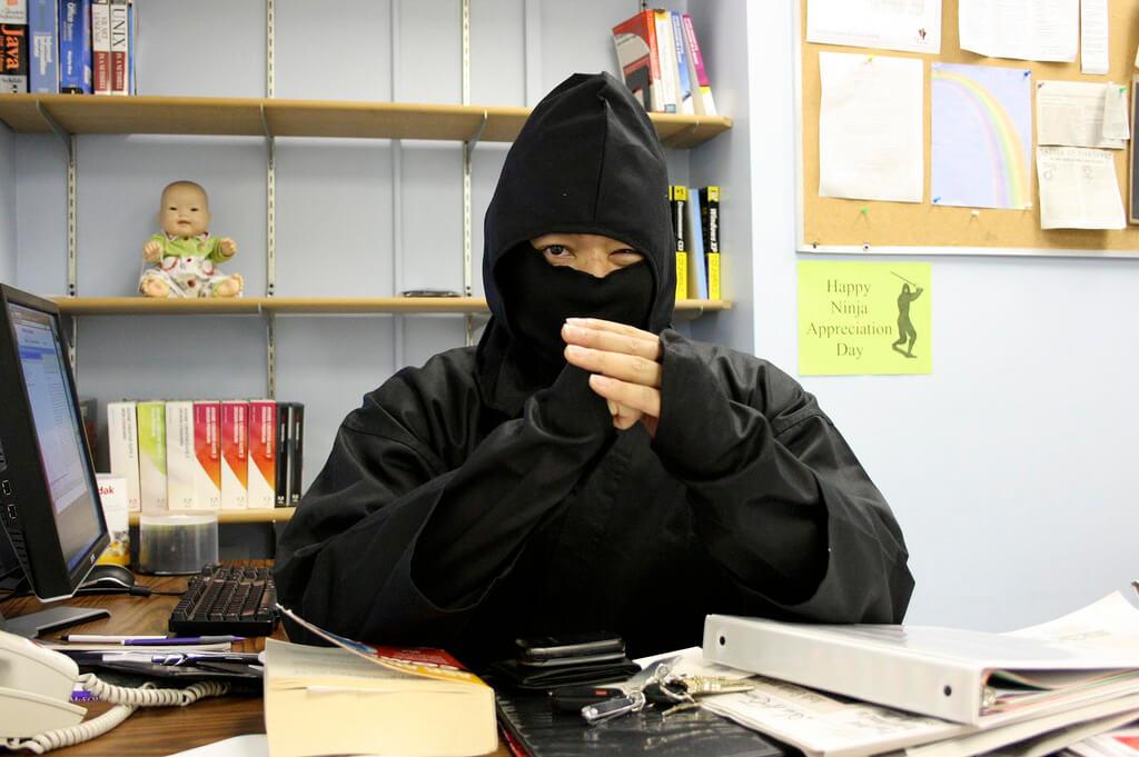 International Ninja Day