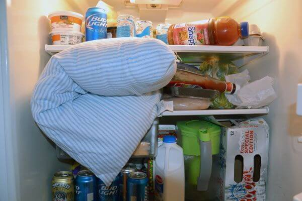 Put A Pillow On Your Fridge Day