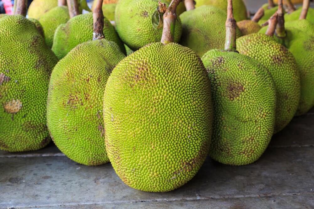 Jackfruit Day