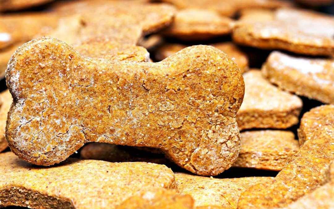 International Dog Biscuit Appreciation Day – February 23, 2021