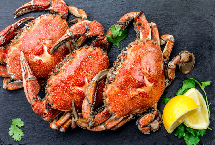 National Crabmeat Day – March 9, 2021