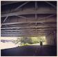 Arlington Loop