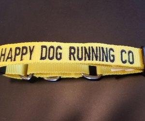 HDR Dog Collar