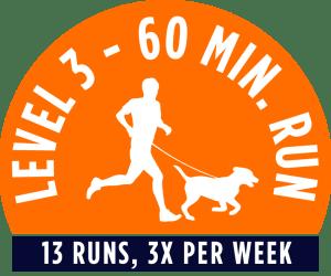 Level 1 - 60 minute running package - 13 Runs, 3x per week