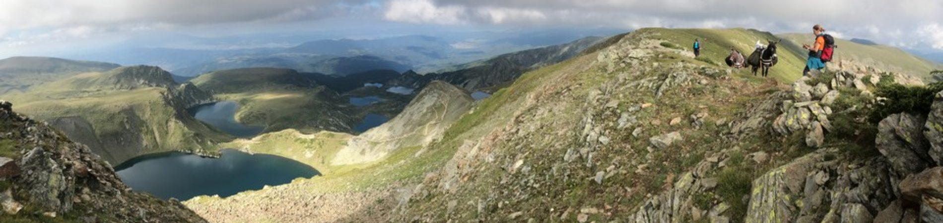 rila mountain in southwest bulgaria is the highest mountain on the balkan peninsula. Eselschrei Im Rila Gebirge Happy Donkeys