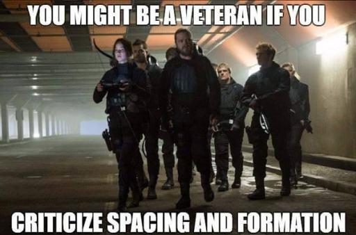 Veterans Day Funny Meme