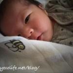 出産のご報告とブログ一時休止のお知らせ