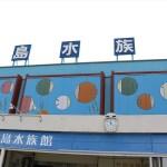 竹島水族館が人気の理由!入館料金500円&駐車料無料で子連れレジャーに最適