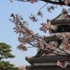 高知城の天守閣は子供料金が無料!急な階段があるので小学生以上がおすすめ