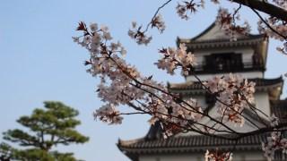 高知城の子連れ観光