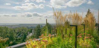 Biodiverse green roof wins Grands Prix du Design award for MYTO Design