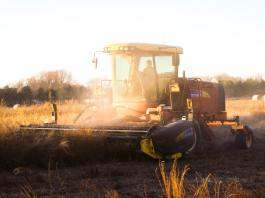 5 cool measurement tools attempting to quantify regenerative agriculture