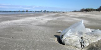 Virginia Governor Takes Action on Single-Use Plastics