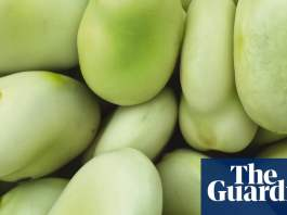 Legumes research gets flexitarian pulses racing with farming guidance