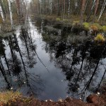 How scientists are restoring boreal peatlands to help keep carbon in the ground