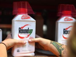 Bayer to Pull Glyphosate Products, Including Roundup, From U.S. Home and Garden Market