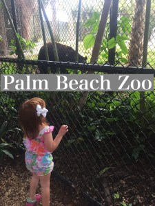 Palm Beach Zoo by Happy Family Blog