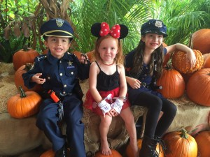 Our favorite South Florida Pumpkin Patches by Happy Family Blog