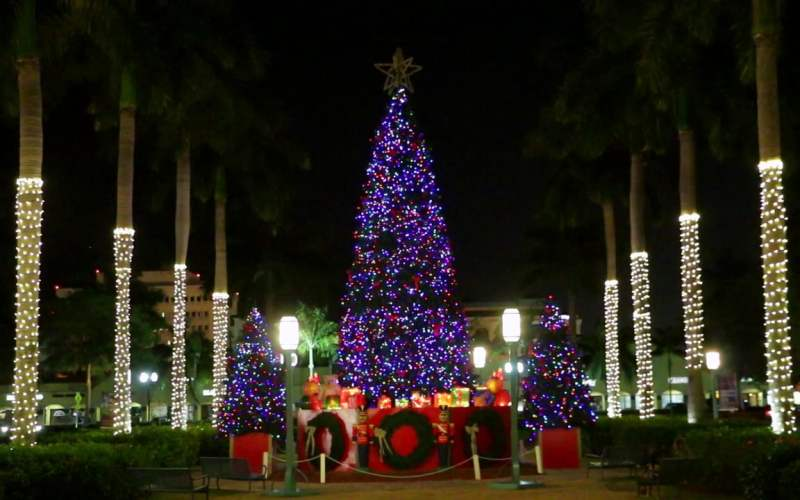 South Florida Holiday Bucket List 2016