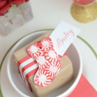 DIY Peppermint Holiday Decor