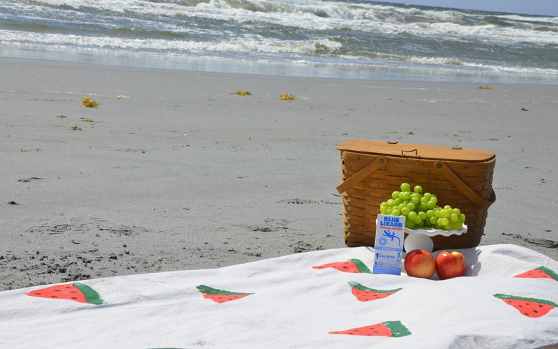 DIY Watermelon Picnic Blanket