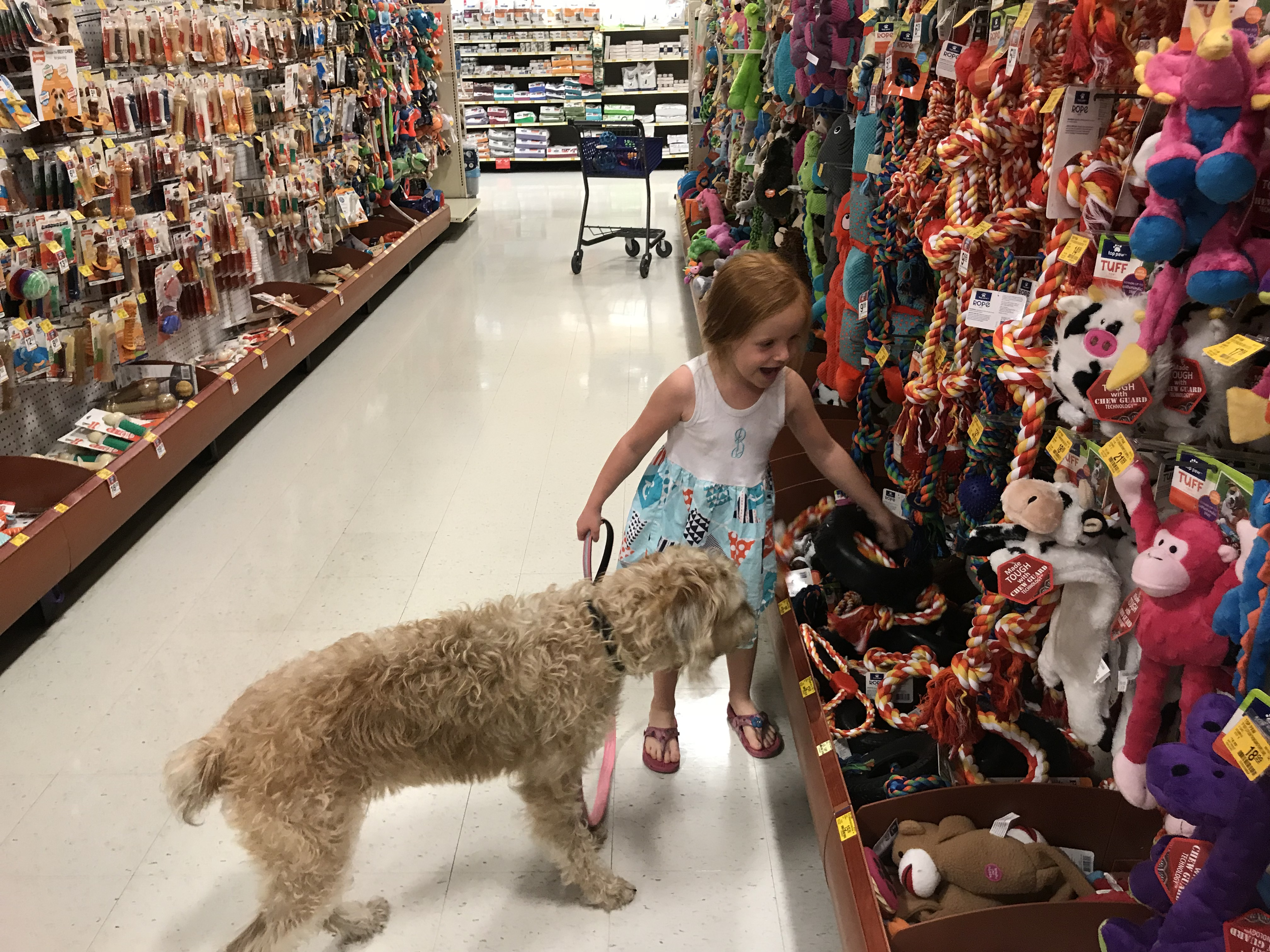 5 Ways to Savor the Holidays with your Dog• Happy Family Blog
