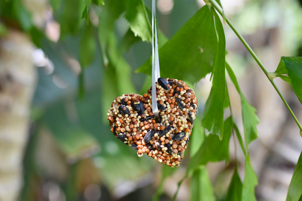 Bird Seed Crafts