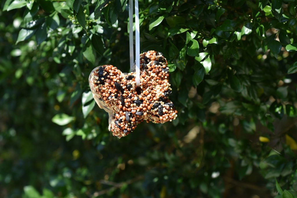 Bird Seed Ornaments with gelatin