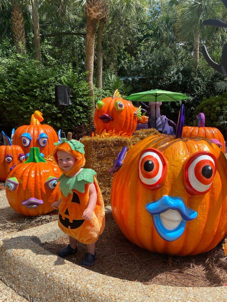 SeaWorld Orlando Halloween Spooktacular Pumpkin Garden