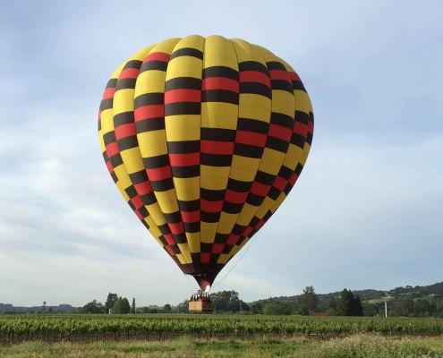 landing near a winery