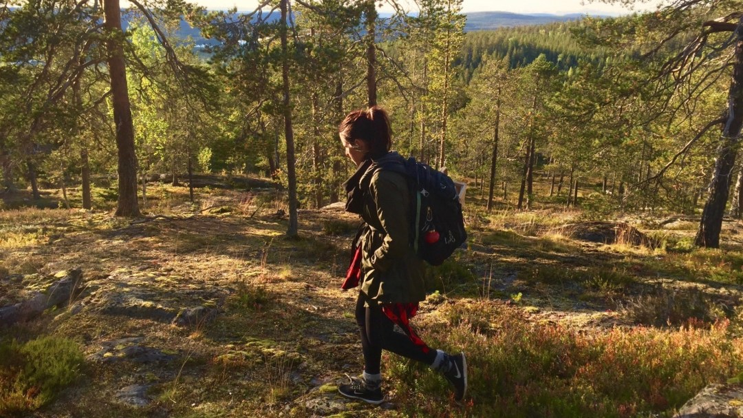 Happy-Fox-Arctic-Nature-Trip-forest-lady-p