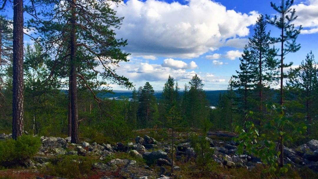 Happy-Fox-Arctic-Nature-Trip-river-view-p