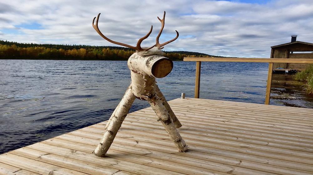 Happy-Fox-Arctic-Summer-Family-Day-rudolf-reindeer-s