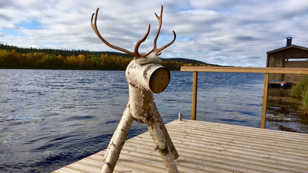 Happy-Fox-Arctic-Summer-Family-Day-rudolf-reindeer