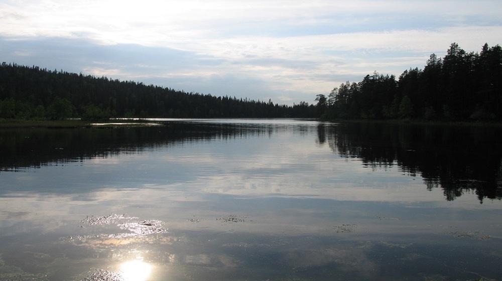 Happy-Fox-Boat-Trip-to-the-ounasjoki-river kopio