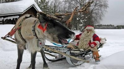 Happy-Fox-Christamas-is-coming-santa-claus-and-reindeer kopio