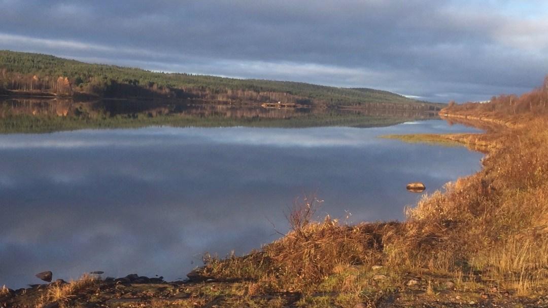 Happy-Fox-Fishing-ounasjoki-river