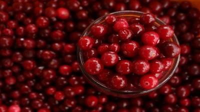Happy-Fox-Goods-of-the-Forest-lingonberries kopio