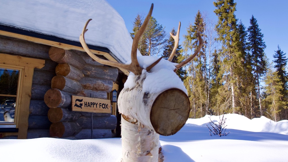 Happy-Fox-Log-Sauna-And-Snack-Winter-rudolf-and-fox-cottage-p