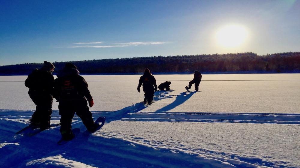 Happy-Fox-Winter-Forest-snowshoeing-ounasjoki-river