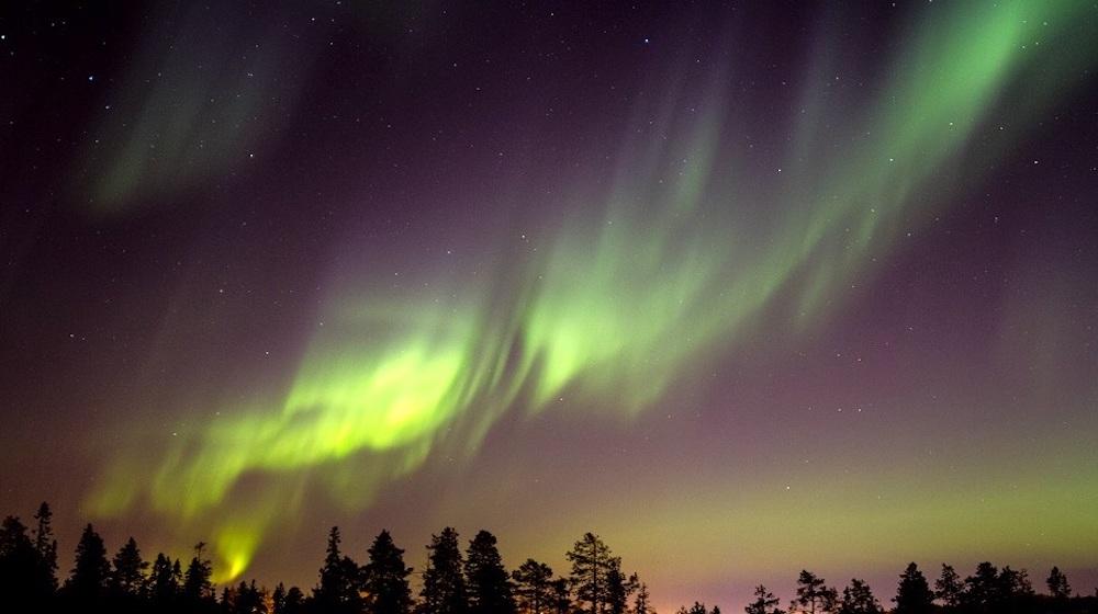 Happy-Fox-aurora-and-nature-photography-adventure-aurora-sky