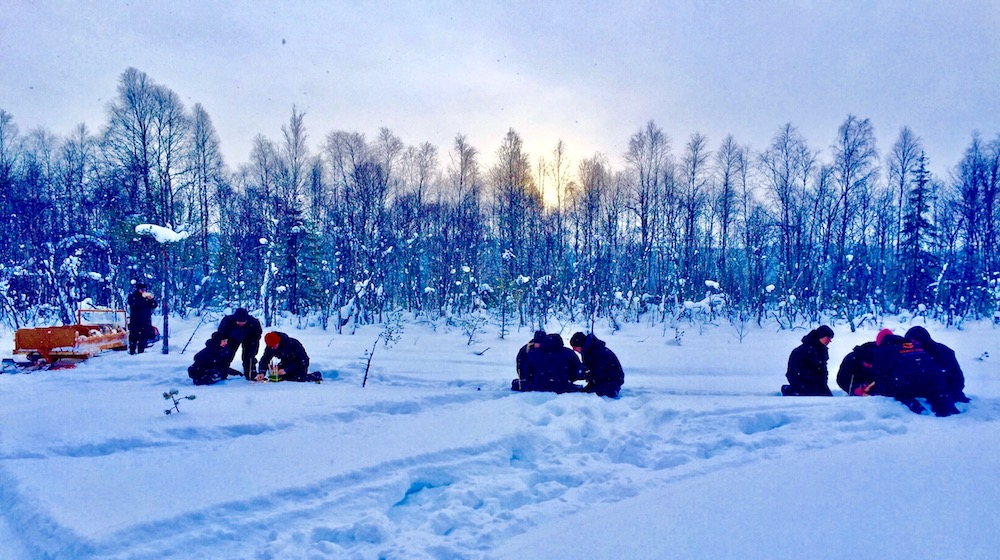 Happy-Fox-Arctic-Winter-Games-puzzle-survivor-s