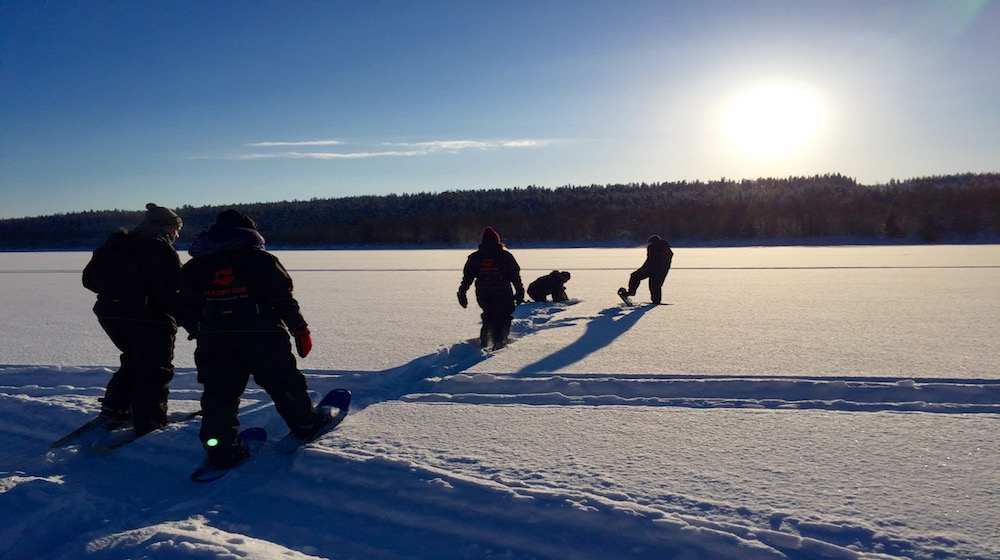 Happy-Fox-Arctic-Winter-Games-snowshoieng-ounasjoki-river-s