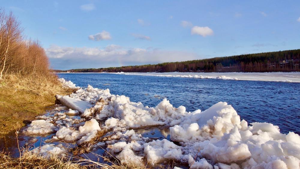 Happy-Fox-Arctic-Nature-Awakens-icerun-ounasjoki-p