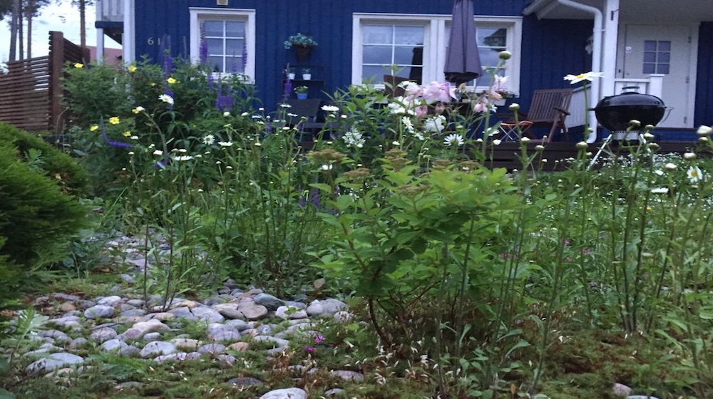 Happy-Fox-Barbegue-Finnish-home-garden-front-garden