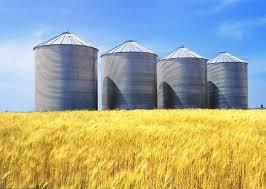 Crop Storage