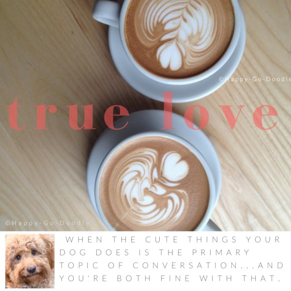 downshot of two white coffee cups on wood table and title true love with quote about dog love that says when the cute things your dog does is the primary topic of conversation...and you're both fine with that and photo of red goldendoodle dog's face