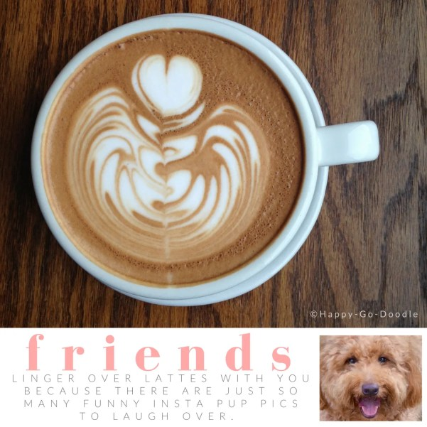 Downshift of cup of latte with heart swirled iin foam and title friends and quote about dogs and coffee, inset of goldendoodle dog photo