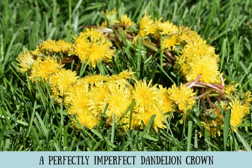 "Bright yellow dandelion crown on green grass and text reading ""a perfectly imperfect dandelion crown"""